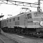 EF58 100 青大将塗色 『つばめ』