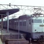 EF81 301+14系(さくら)