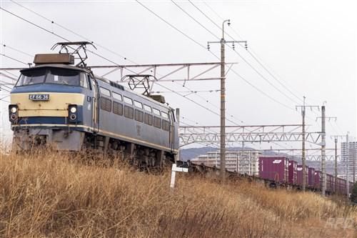 EF66 36 貨レ
